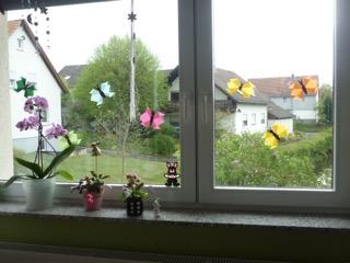 <strong>Sarah hat ihr Fenster mit Schmetterlingen geschmückt.</strong>